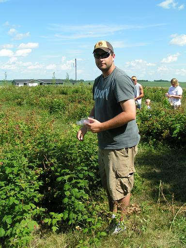 A good day for picking raspberries.