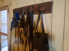 March 3 horseshoe art and Josh baby 039